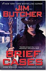 Dresden Files: Brief Cases